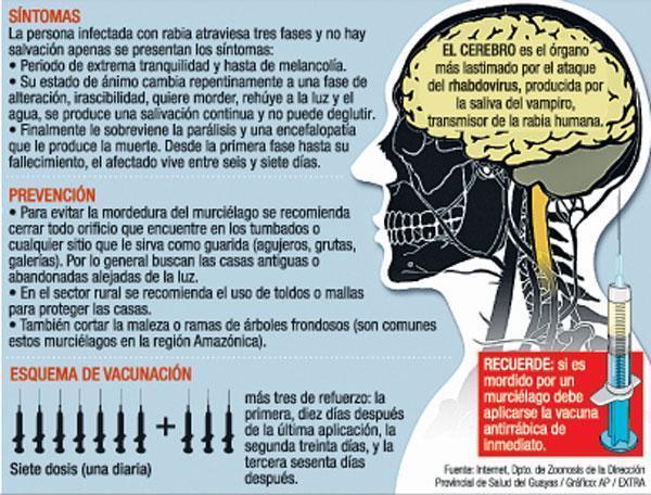 Rabia humana en Ecuador