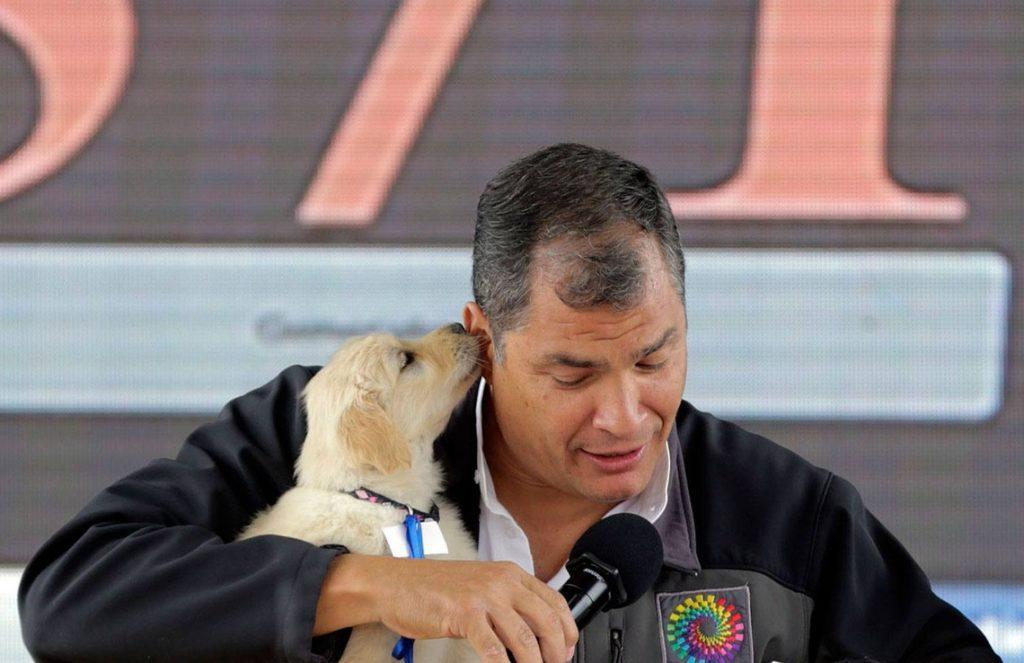 rafael correa sorteo perro criticas
