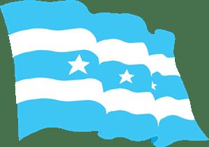 bandera de guayaquil vector